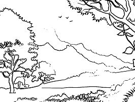 Forest Landscape Coloring Page