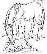 Fresh Horse