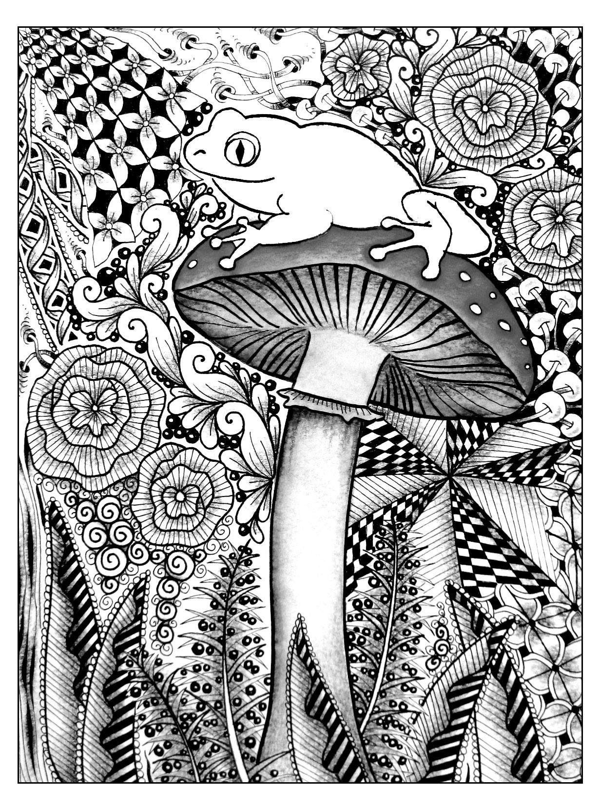 Frog And Mushroom Coloring Page