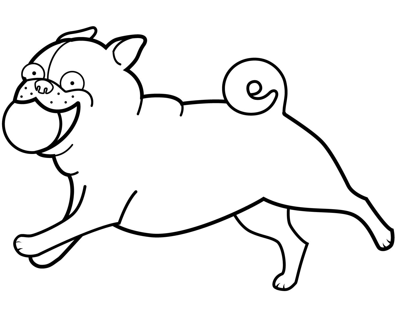 Funny Pug Playing Ball