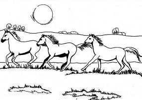 Galloping horses Coloring Page