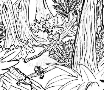 Hard Forest Animals Coloring Page