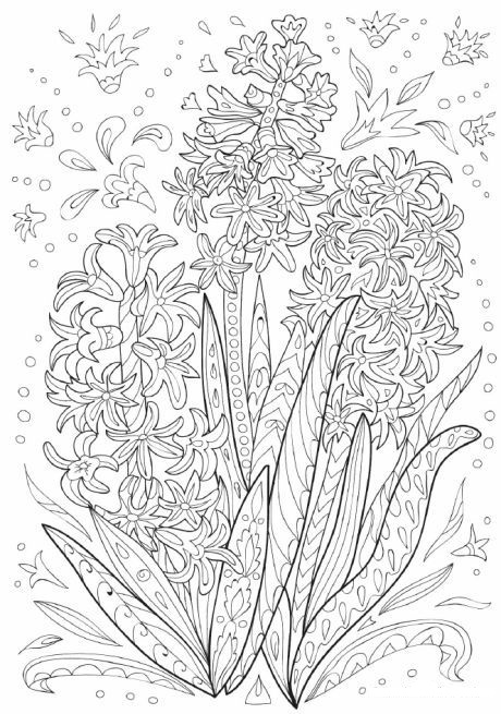 Hard Hyacinth Doodle Coloring Page