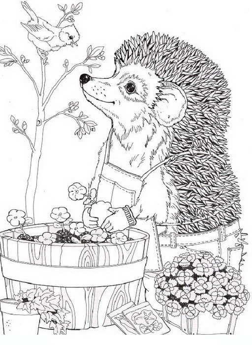 Hedgehog Picking Up Flowers