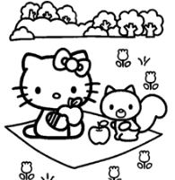 Hello Kitty On A Picnic