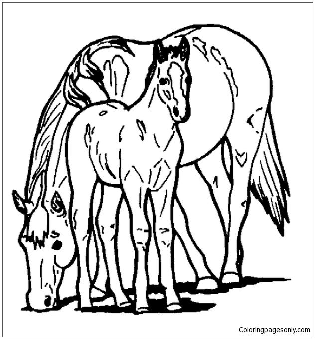 - Horse And Pony Coloring Page - Free Coloring Pages Online