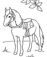 Horse and saddle horse Coloring Page