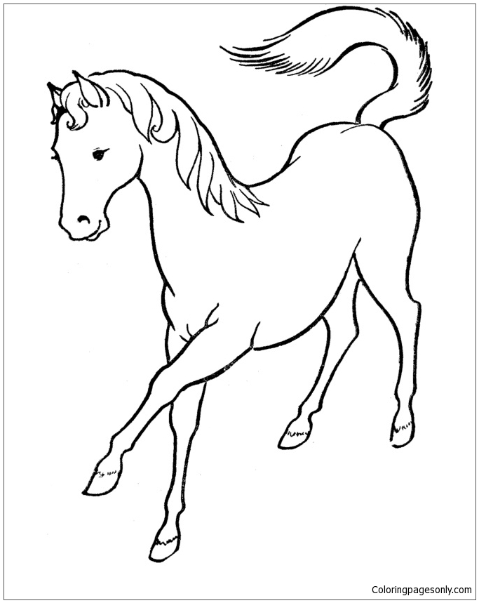 Horse Beautiful Coloring Page