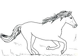 Horse Cute 4 Coloring Page
