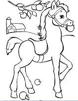 Horse Cute 5