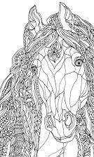 Horse s Head