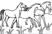 Horseland Horses