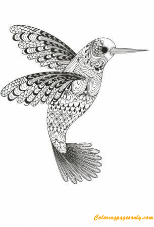 Beauty Of Hummingbird Coloring Page - Free Coloring Pages Online