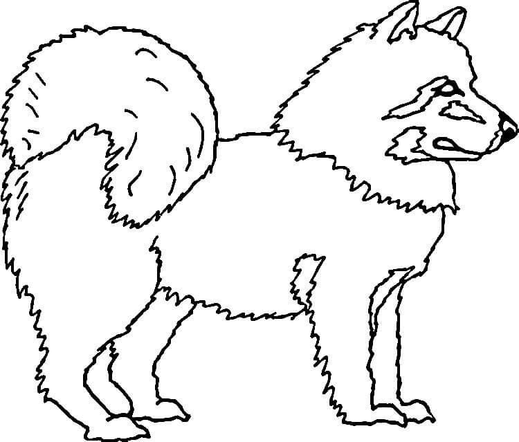 Husky Art Coloring Page