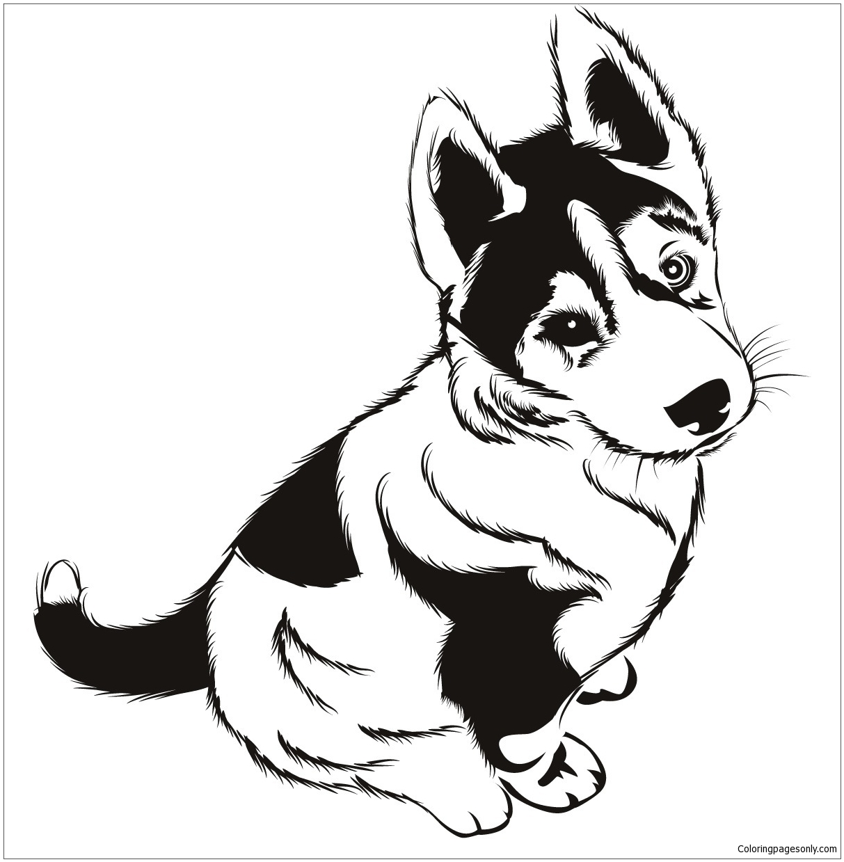 Husky Puppies Coloring Page Free Coloring Pages Online