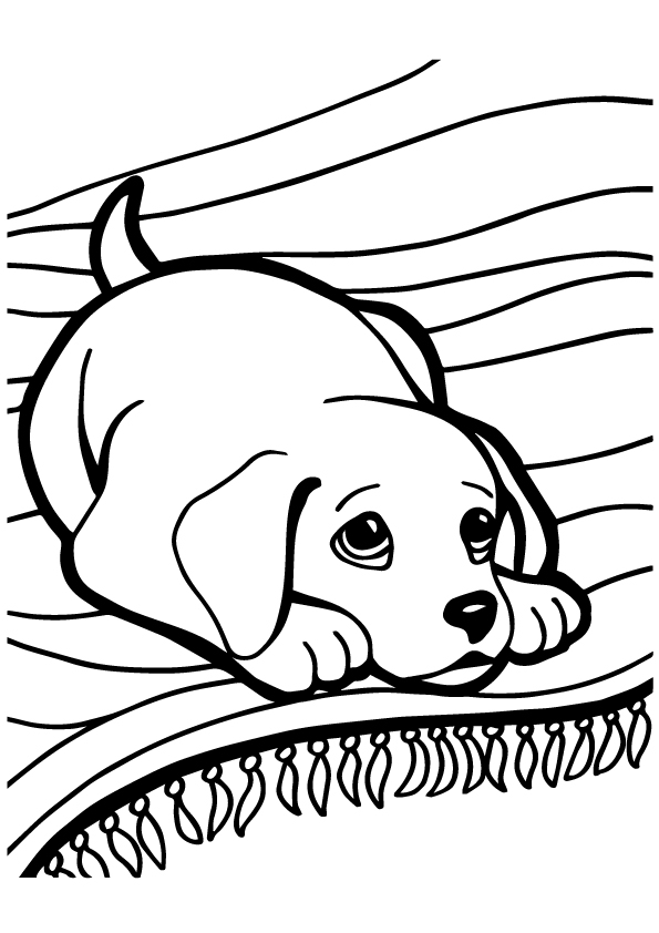 Husky Puppy Coloring Page