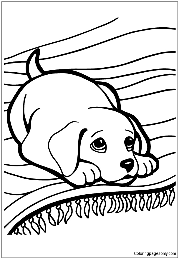 Husky Puppy Coloring Page - Free Coloring Pages Online