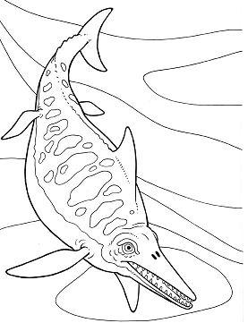 Ichthyosaurus Dinosaur 1