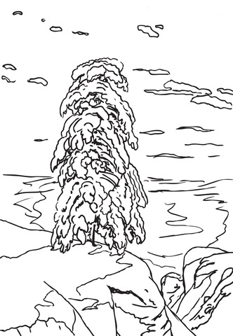 In The Northern Wilderness Of Ivan Shishkin Coloring Page