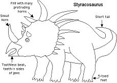 Information Sheets About Styracosaurus Dinosaurs