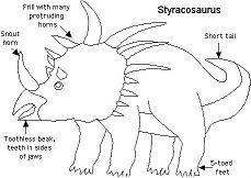 Information Sheets About Styracosaurus Dinosaurs Coloring Page