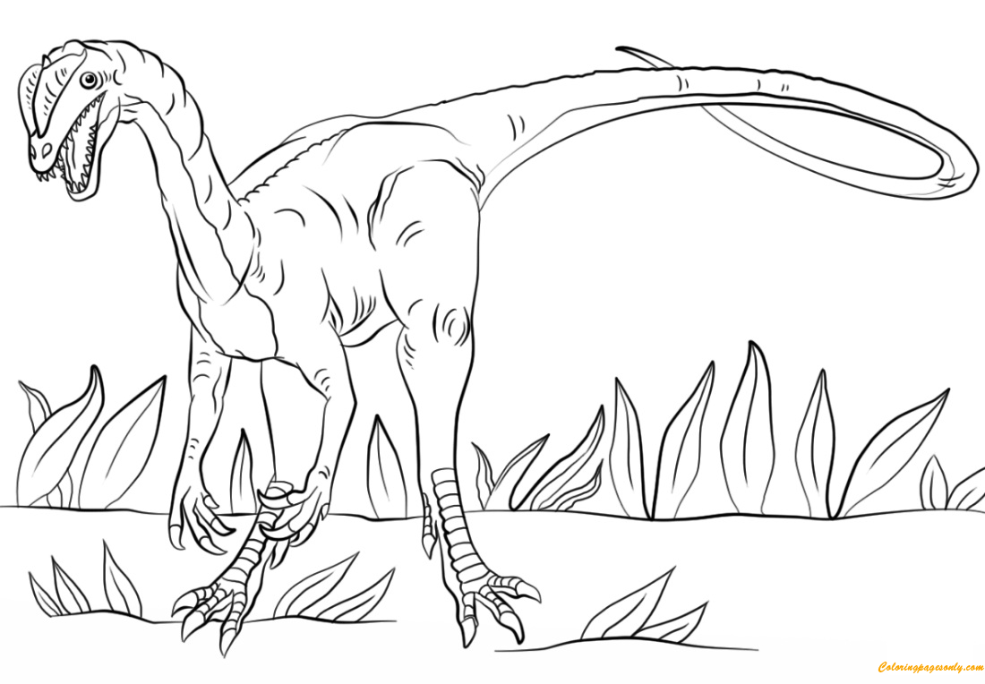 jurassic park dilophosaurus coloring page free coloring pages online. Black Bedroom Furniture Sets. Home Design Ideas