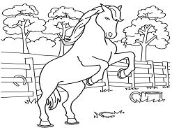 Last Chance Horse Coloring Page