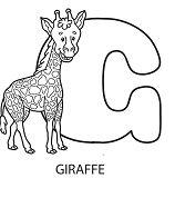 Letter G Is For Giraffe