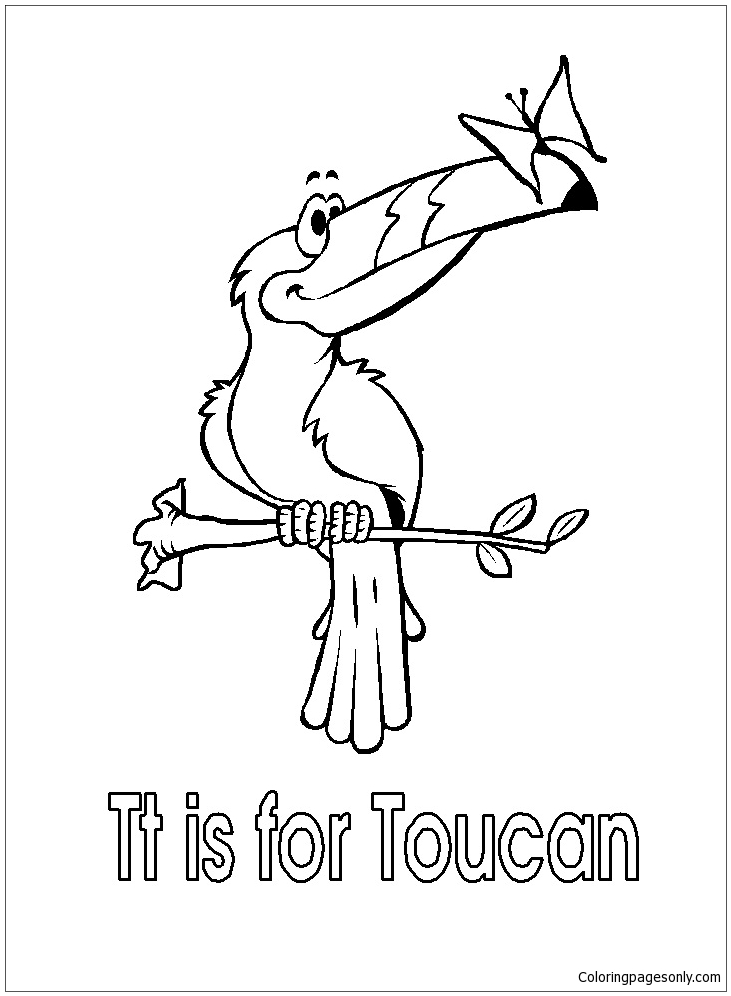 Toucan Coloring Pages - Best Coloring Pages For Kids | 996x731