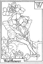 Letter W For Wallflower Flower Fairy Coloring Page