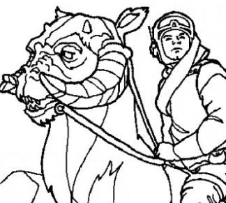 Luke Skywalker Of Him Riding Tauntaun