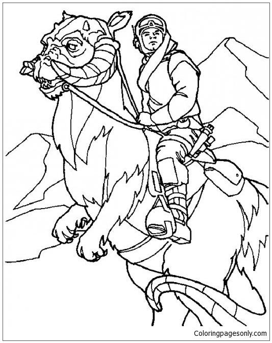 Luke Skywalker Of Him Riding Tauntaun Coloring Page Free