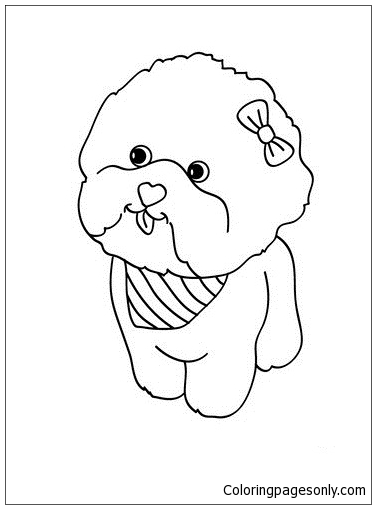 Maltese Dog Puppy Coloring Page