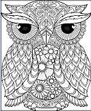 Mandala owl