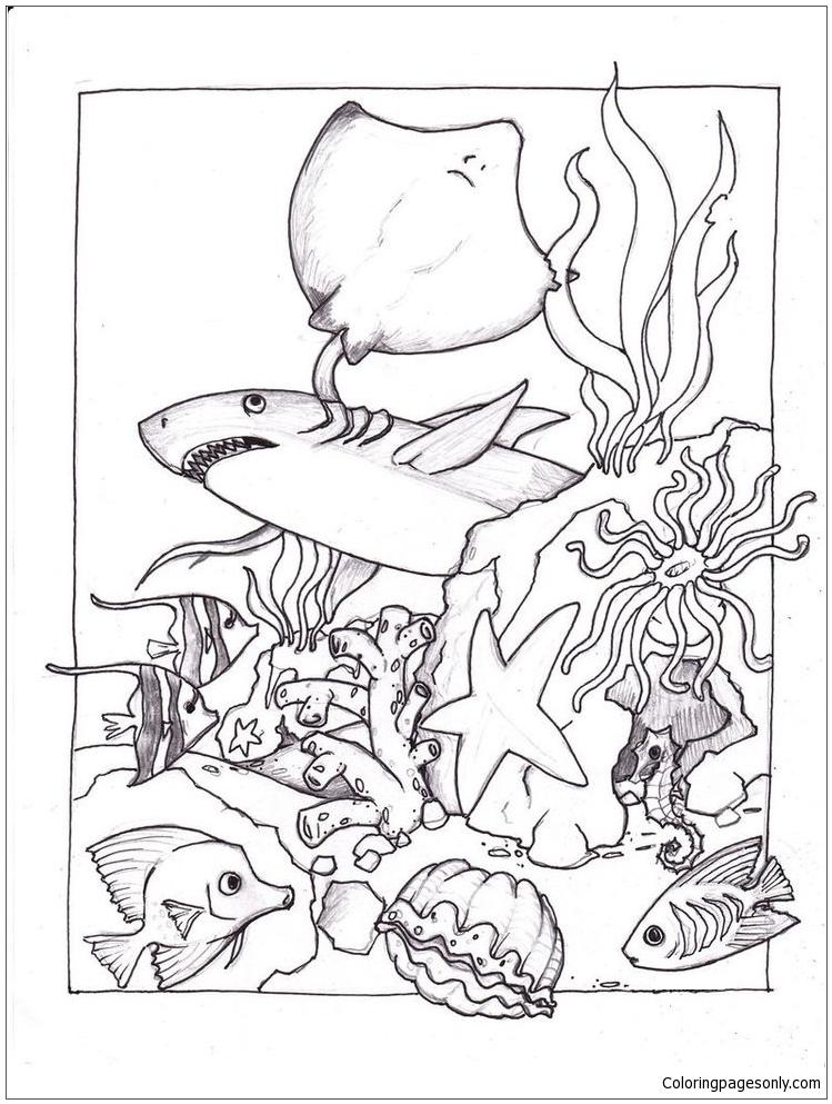 sea floor coloring pages sketch coloring page