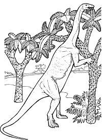 Massospondylus Prosauropod Jurassic