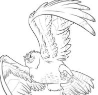 Maui Becomes A Bird Coloring Page