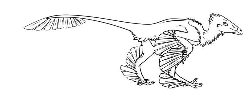 Microraptor Archaeopteryx Dinosaur free lines  Coloring Page