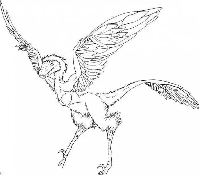 Microraptor Archaeopteryx Dinosaur