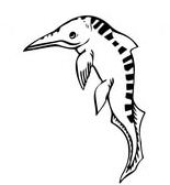 Mixosaurus Ichthyosaur