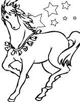 Modest Horse