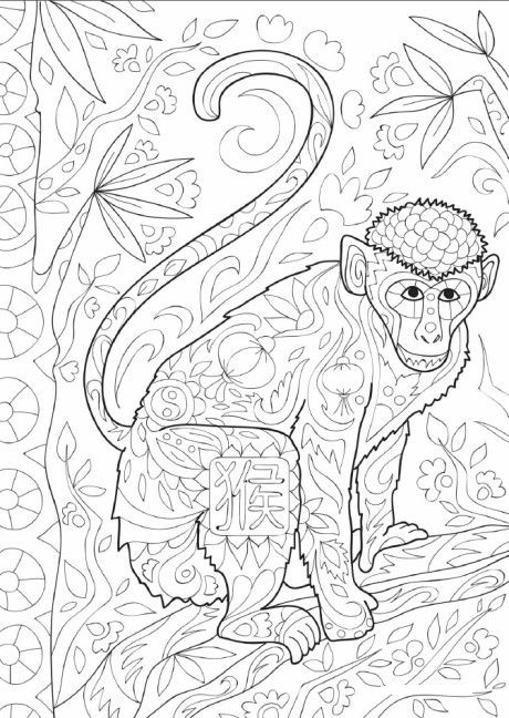 Monkey Climbing Tree Coloring Page