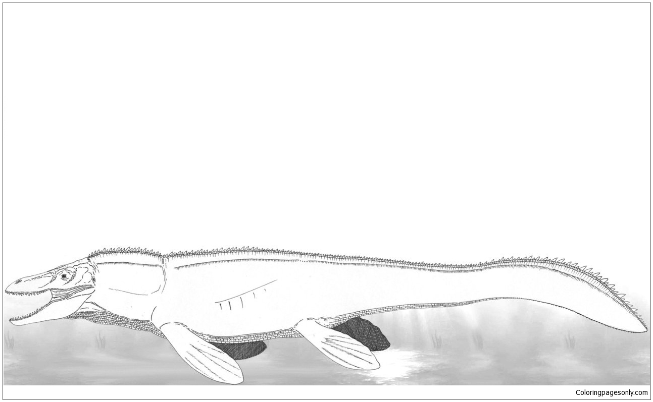 Mosasaurs 3 Coloring Page