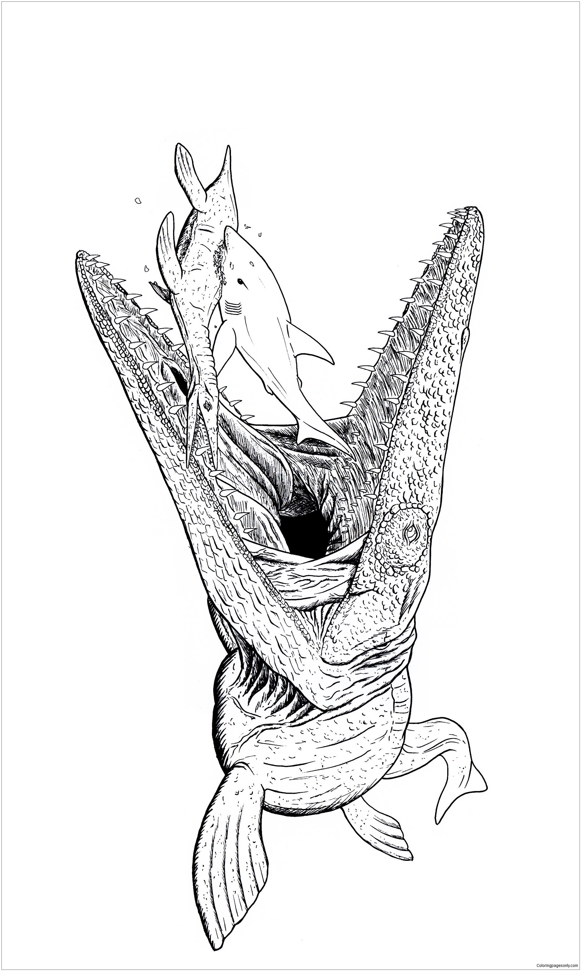 Mosasaurus 1 Coloring Page Free Coloring Pages Online