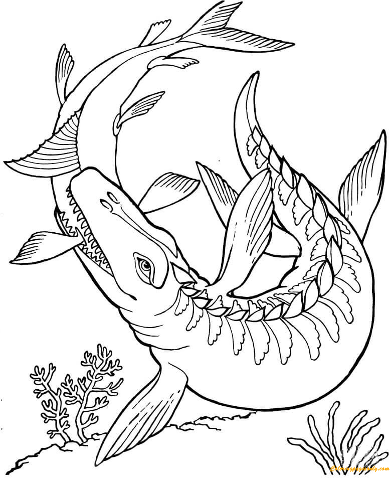 mosasaurus dinosaur coloring page free coloring pages online. Black Bedroom Furniture Sets. Home Design Ideas