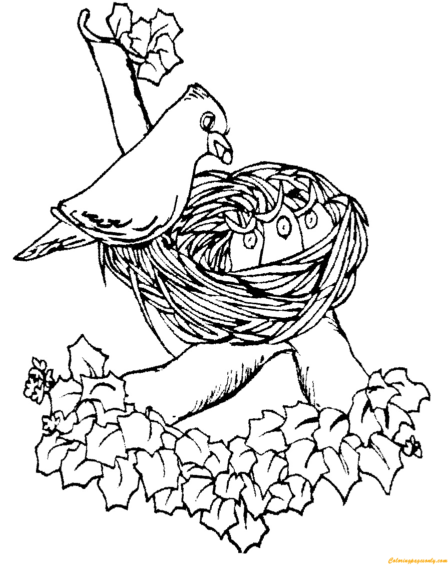 Mother Bird Feeding Cute Baby In The Nest Coloring Page