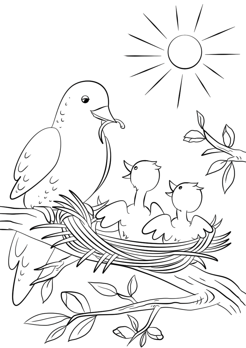 Mother Bird Feeding Two Babies Coloring Page