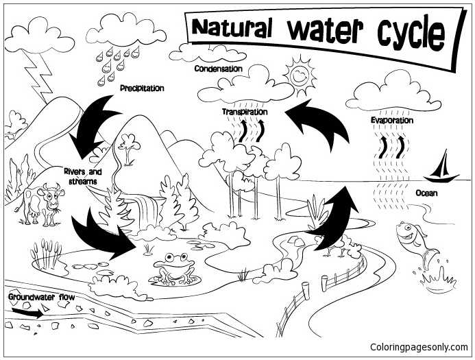 Natural Water Cycle Coloring Page - Free Coloring Pages Online
