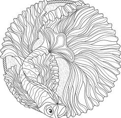 Ocean Mandalas