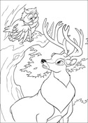 Owl And Roe  from Bambi Coloring Page